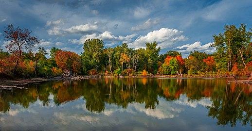 Untere Marchauen im Herbst, Biberteich.jpg