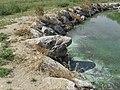 VELKÝ BOR - malý rybník (kámen žralok).JPG