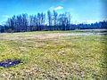 Valdaysky District, Novgorod Oblast, Russia - panoramio (3031).jpg