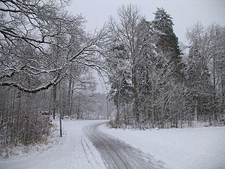 Valla Wood nature reserve in Östergötland, Sweden