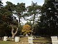 Vananõmme kalmistu 1.JPG