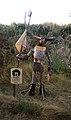 Ventotene, figura lungo i sentieri della scogliera sud 02.jpg