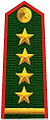Vietnam Border Defense Force Captain.jpg