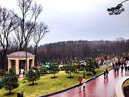 View from aside of Honka in Mezhyhirya.jpg