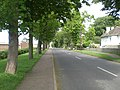 View north east along road through National Construction College, Bircham Newton - geograph.org.uk - 439142.jpg