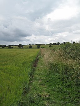 View of Footpath towards Catton Hall - geograph.org.uk - 1388239