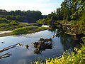 View of the Molalla River from walking trail, of Molalla River State Park, Oregon.jpg
