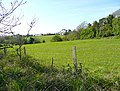 View towards Paize, Poughill - geograph.org.uk - 1348911.jpg