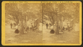 Views of Etna Campground, by H. L. Gordon 3.png