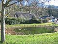 Village pond Tollard Royal Dorset - geograph.org.uk - 130033.jpg