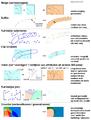 Voorbeelden GIS bewerkingen.PNG