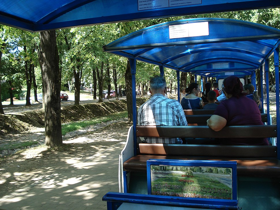 Vrnjačka Banja, voz 001
