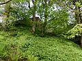 Walled garden, Caldwell estate.JPG