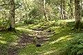 Warwickslade Cutting, original stream bed - geograph.org.uk - 1548131.jpg