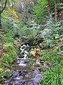 Waterfall - geograph.org.uk - 1031728.jpg