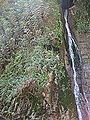 Waterfall and foliage (4070428968).jpg