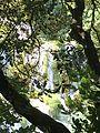 Waterfall at Plitvice.jpg