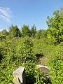 Wavrechain-sous-Denain - Fosse Blignières des mines d'Anzin, puits n° 2 (D).JPG