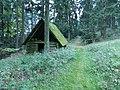 Weg und Waldhaus in Naas - panoramio.jpg