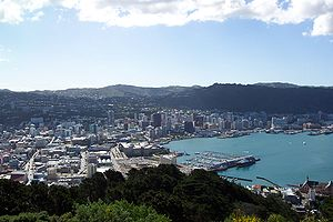 Wellington's central business district viewed from Mount Victoria