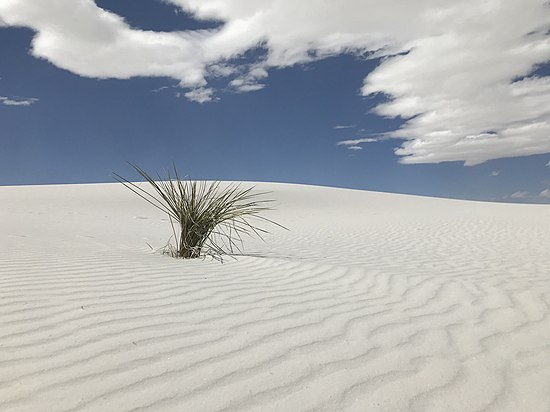 The White Sands National Monument in New Mexico, by Macadelic10.