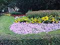Wilanów - pałacowy dziedziniec - 1.jpg