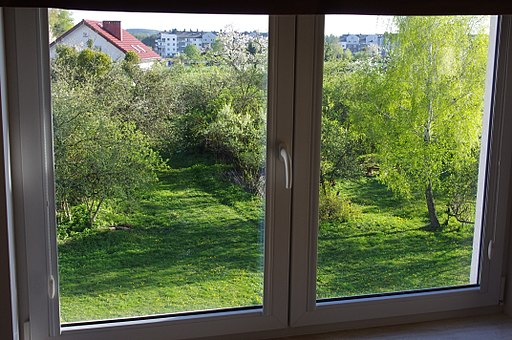Window view with green trees 2