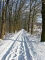 Winterlicher Kirchsteig - panoramio - osand.jpg