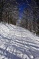 Winterlicher Weg (137146453).jpeg