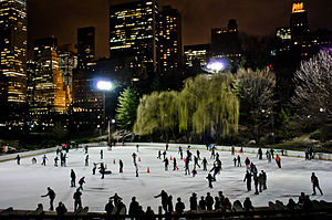 Wollman Rink - Wollman Rink at night