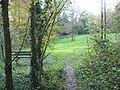 Woodland clearing - geograph.org.uk - 603745.jpg