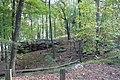 Woods - panoramio (7).jpg