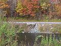 Woodstock-Vermont-Woodstock-Warren-Through-Truss-Bridge-Remains.jpg