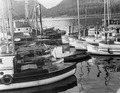 Wrangell Narrows, Alaska. Petersburg small boat harbor, looking west from end of pier at public - NARA - 298794.tif