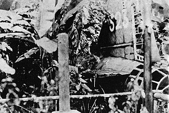 """Operation Vengeance - The crashed remains of Yamamoto's Mitsubishi """"Betty"""" bomber in the jungles of Bougainville."""