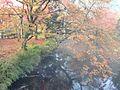 Yufuincho Kawakami, Yufu, Oita Prefecture 879-5102, Japan - panoramio (3).jpg