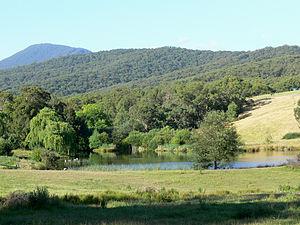 Chum Creek, Victoria - Image: Yumbungalake