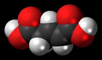 Glutaconic acid - Image: (E) Glutaconic acid 3D spacefill