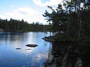 Tyresta National Park - Image: Årsjön, Tyresta national park, 2007 07 20, view southeast from western shore