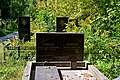 Берковецьке кладовище DSC 0674.jpg