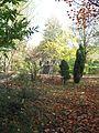 В ботаническом саду - panoramio (1).jpg