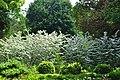 Грузия, ботанический сад - panoramio (5).jpg