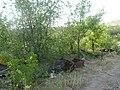 Заброшенный дачный посёлок - panoramio (62).jpg