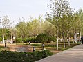 Парк в городе Карамай СУАР КНР.jpg