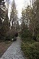 Сирецький дендрологічний парк 30.jpg
