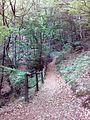 Смоларски водопад 29.jpg