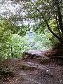 Смоларски водопад 50.jpg
