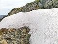 Снег в разгаре лета - panoramio.jpg