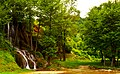 Споменик природе Долина потока Бигар.jpg