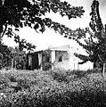 בית החולים ביילינסון, מחלקה חדשה-ZKlugerPhotos-00132mr-090717068512ead1.jpg